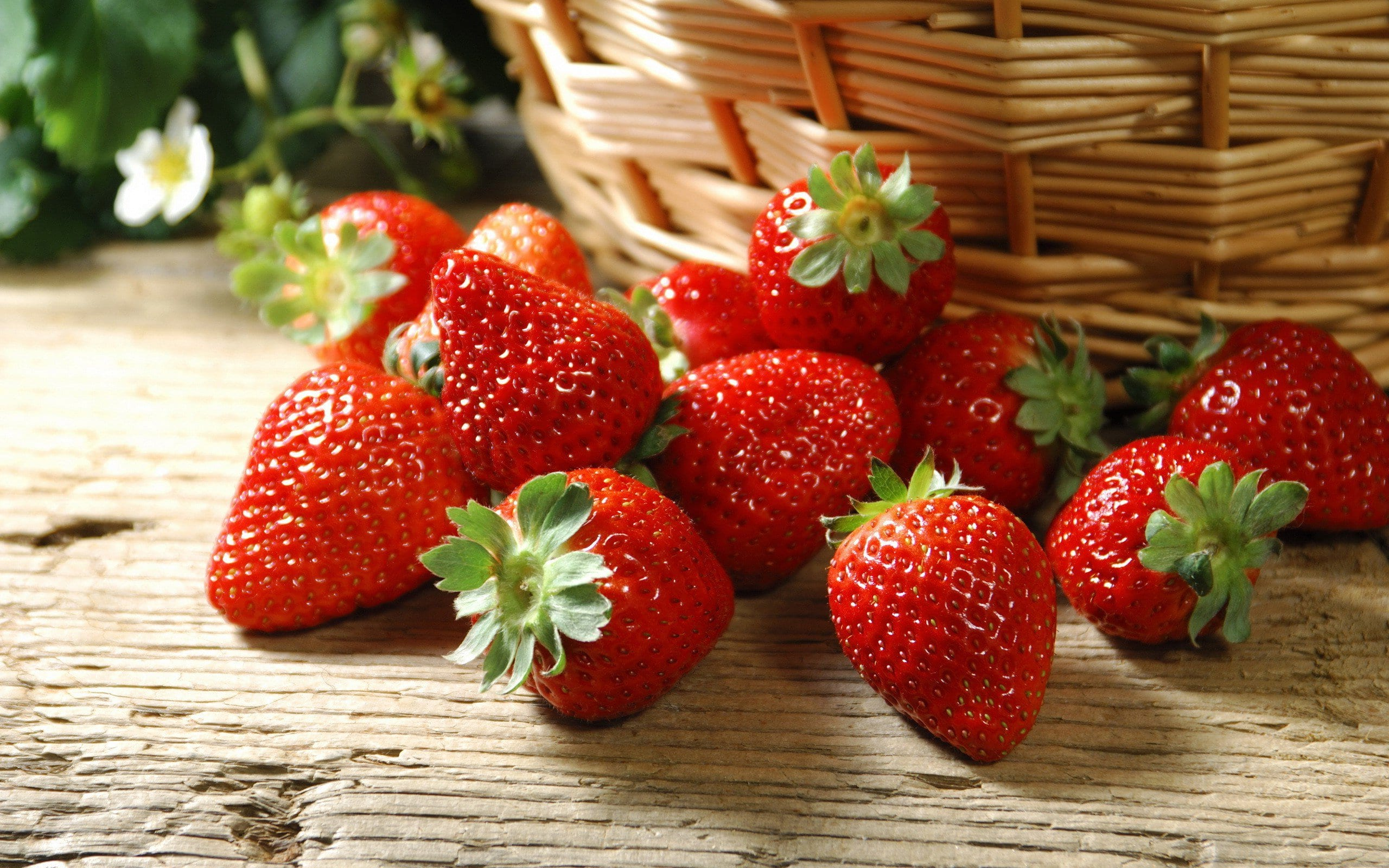 beautiful-strawberry-red-fruit-wallpaper-full-hd - schumacher's